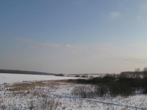 Лесные Дачи / Окрестности зимой
